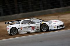Car Racing(Corvette Z06,FIA GT) Stock Photos