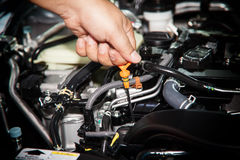Car repair service, Auto mechanic checking oil level in a engine Royalty Free Stock Photos