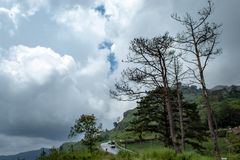 Car ride down the mountain on road wet from the rain. royalty free stock photography