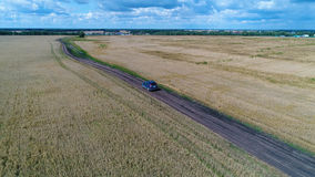 The car rides along the wheat fields. Beautiful landscape from the height. Photos from a height. The wheat fields. Shooting at a drone. Beautiful landscape from Royalty Free Stock Image