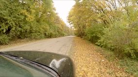 The car rides through the autumn forest stock video footage