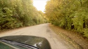 The car rides through the autumn forest. Car view from the windshield to the forest road. Road travel through the autumn forest stock video footage
