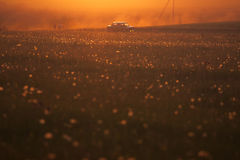 Car rides at sunset on meadow Royalty Free Stock Photos
