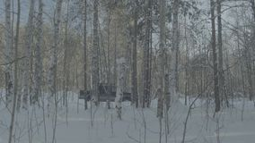 Car rides on a winter forest road. A car in a snow-covered road among trees.  stock footage