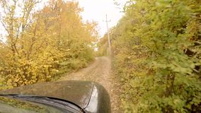 The car is riding in the autumn forest. The car goes on a forest mountain path. View from car window on hood and autumn forest stock video footage
