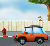A car at the road and a cat above the fence Royalty Free Stock Photography