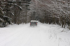 Car on road in forest in winter Stock Image