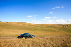 Car on road among   meadows Stock Photos