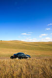 Car on road among   meadows Stock Photo