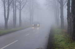 Car on road on thick fog Royalty Free Stock Images