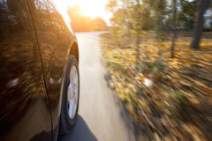 Car running on the road in fall season Royalty Free Stock Photo