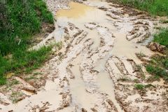 Car ruts in dirty road mud Stock Image