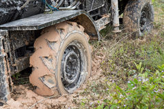 Car's wheels in mud in the forest Stock Photos