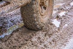 Car's wheels. Stock Photos