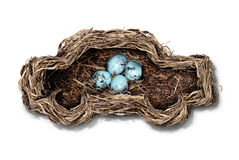 Car Safety. And auto insurance concept as a nest shaped as an automobile protecting a family of bird eggs as a concept and symbol for transportation security stock illustration