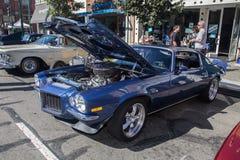 Car Show classico 2014 della via del parco di Alameda Immagine Stock