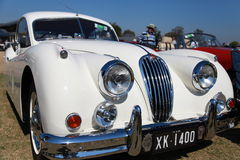 Car Show de Australia en los reyes School Fotos de archivo libres de regalías