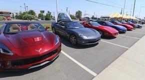 Car Show di Chevrolet delle corvette Immagine Stock Libera da Diritti
