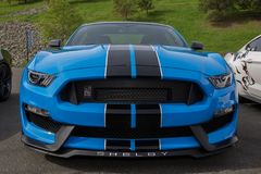 Mustang Shelby Royalty Free Stock Photos