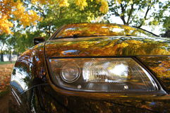 Car showing fall colors. A classic Z car showing the colors of fall in the impeccable black metallic paint royalty free stock photos