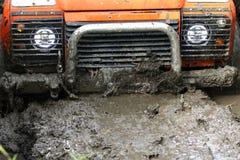 Free Car Sinks In Swamp Stock Photos - 58567713