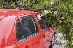 Car smashed by high winds Royalty Free Stock Photos