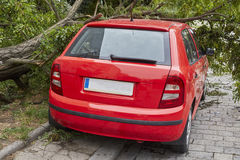 Car smashed by high winds Royalty Free Stock Image