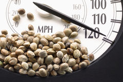 Car speedometer with hemp seeds on it Royalty Free Stock Photography