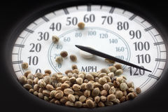 Car speedometer with hemp seeds on it Royalty Free Stock Photo