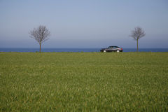 Car in spring landscape Royalty Free Stock Photography