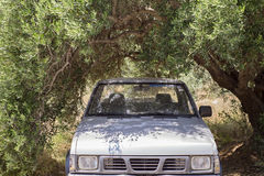 Car standing in the shade of olive tree. Old rusty car standing in the shade of olive tree Stock Image