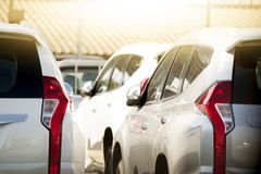 Car stop in parking lot. Many white car stop in parking lot outdoor on day Royalty Free Stock Photography