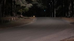 Car Stopped on the Night Road in Forest. Car is stopped on the night road in forest stock video footage