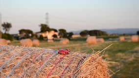Car on a straw bale stock video