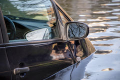 Car submerged in flood water. Royalty Free Stock Photography