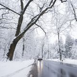Car on tarmac road through snow forest in dutch winter near austerlitz and utrecht in holland. Car on tarmac road and reflection in wet surface through snow royalty free stock photos