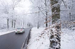 Car on tarmac road through snow forest in dutch winter near austerlitz and utrecht in holland. Car on tarmac road and reflection in wet surface through snow stock image
