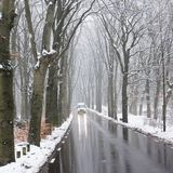 Car on tarmac road through snow forest in dutch winter near austerlitz and utrecht in holland. Car on tarmac road and reflection in wet surface through snow royalty free stock photography