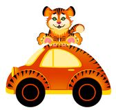 Car  and tiger Royalty Free Stock Photo