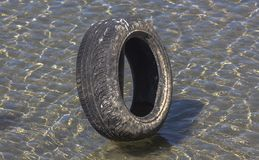 Car tire in the clear waters in the river Drina. Not discarded. It is put on purpose. There is a whole composition of such tires stock photos