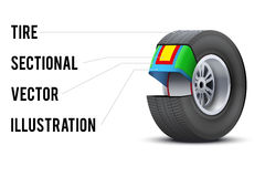 Car tire with layers sectional Stock Image
