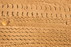 Car tire tracks Royalty Free Stock Photo