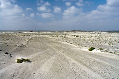 Car tire tracks in the desert Stock Photo