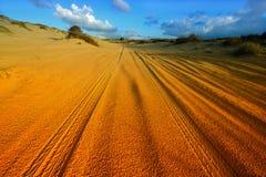 Car tire tracks in the desert. Stock Photo