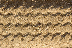 Car tire tracks on sand, as background Stock Images