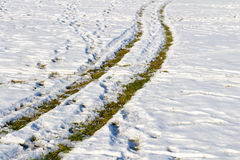 Car tire tracks on the snow. Royalty Free Stock Image