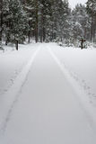 Car tire tracks on winter road Royalty Free Stock Photo