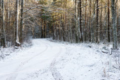 Car tire tracks on winter road Royalty Free Stock Image