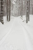 Car tire tracks on winter road Royalty Free Stock Images