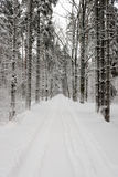Car tire tracks on winter road Royalty Free Stock Photos